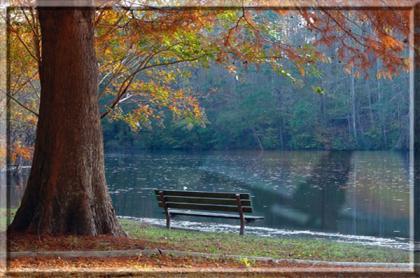 ♠ Lago do Acampamento 1217360658_casa_do_lago_wander